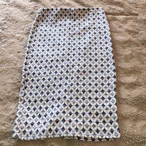 Zara High-Waisted Pencil Skirt